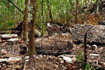 Arheolozi pronašali izgubljeni grad Maja u Meksiku