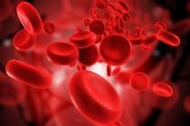Kako do bolje krvne slike