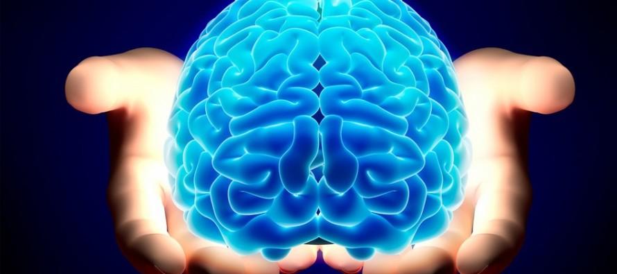 Zanimljive činjenice o ljudskom mozgu