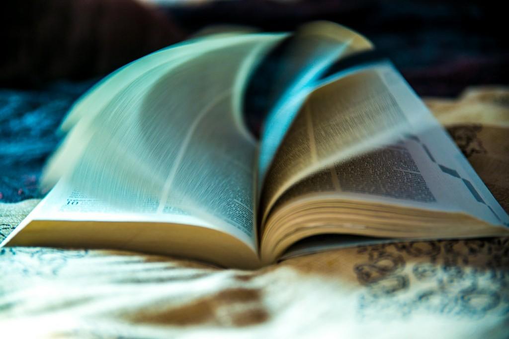 citanje-knjige-stranice