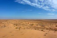 Savremena kraljica pustinje