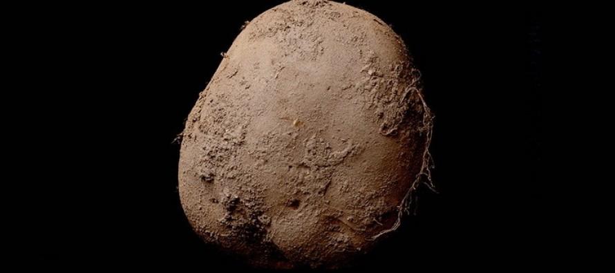 Krompir na fotografiji = milion dolara