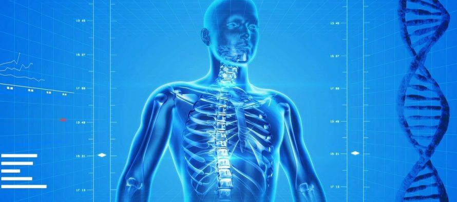 Čudesno ljudsko telo