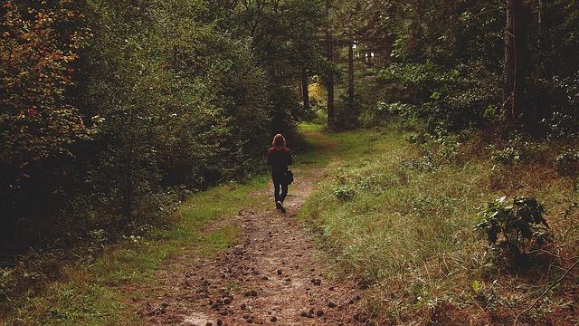 walking-890366_640