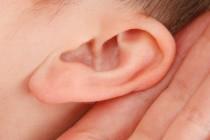 Ljudsko uho kao najbezbednija šifra!