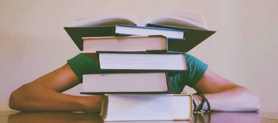 Hrana koja pomaže tokom učenja