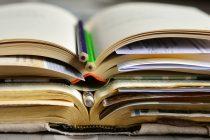 Kako čitanje podstiče razvoj mozga?