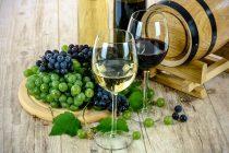 Raspisan je konkurs za upis na master studije na Odseku vinogradarstvo i vinarstvo
