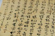 Kursevi kineskog jezika na Filozofskom fakultetu u Novom Sadu