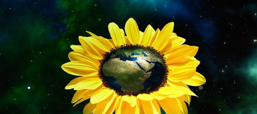 Stipendije Nemačke fondacije za životnu sredinu (DBU)