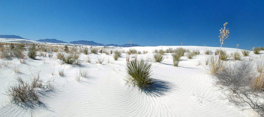 Pustinja sa belim peskom