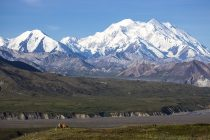 Najveća nesreća u istoriji planinarstva